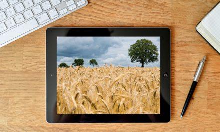 Coltivazione del frumento con tecniche di agricoltura di precisione, corso online il 22 gennaio 2021